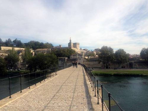 France-Avignon-3