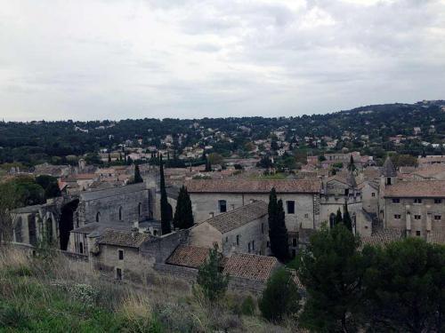 France-Avignon-5