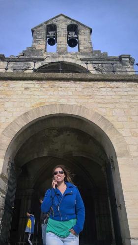 France-Avignon-pont de avignon