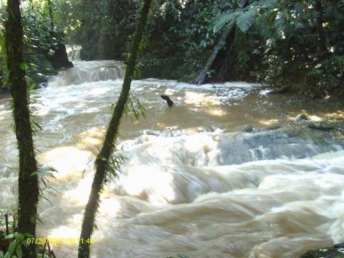 Brasil: Tapiraí