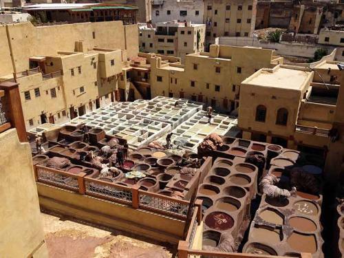 marrocos-fez-tannary